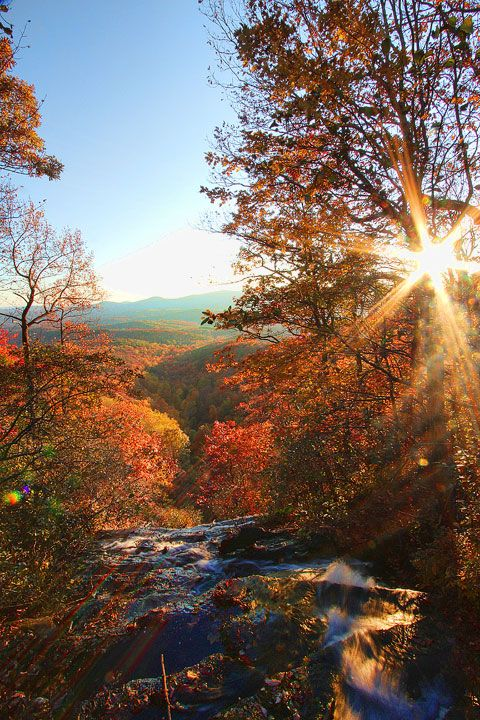 a whole slew of AMAZING fall photos ~ Blue Ridge, GA