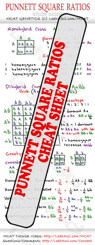 AP Biology Notes, Outlines, and Labs | CourseNotes ...
