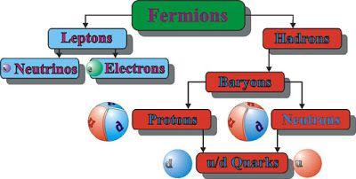 Science: Fermions
