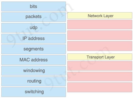 Pin by NCERT Solutions on CCNA RSE Lab | Question, answer, Drop