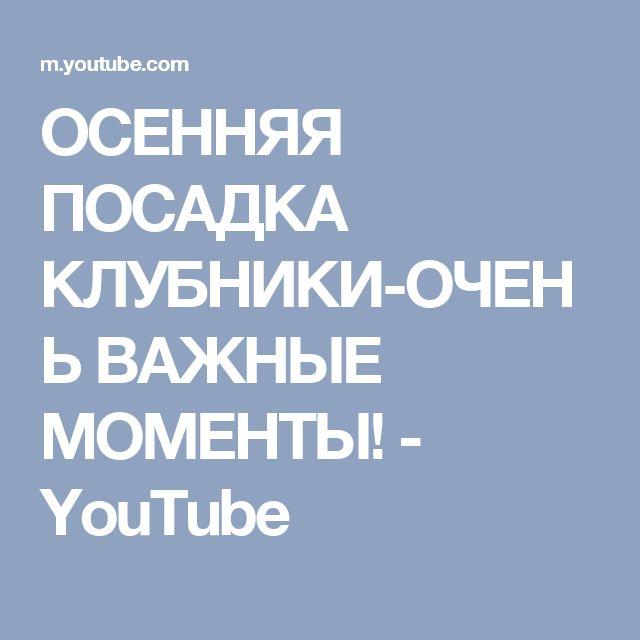 ОСЕННЯЯ ПОСАДКА КЛУБНИКИ-ОЧЕНЬ ВАЖНЫЕ МОМЕНТЫ! - YouTube