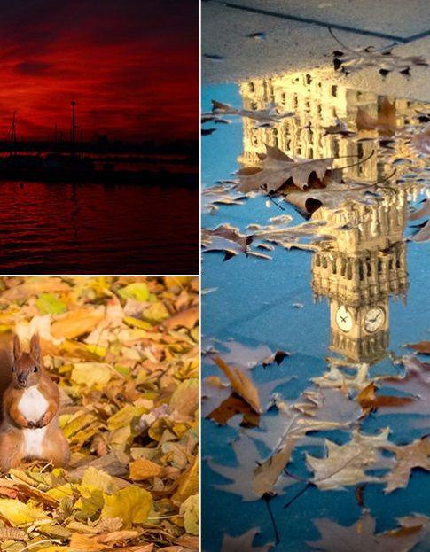 To była niezwykle barwna jesień. Z nutą wiosny, lata i zimy - http://kontakt24.tvn24.pl/sg/to-byla-niezwykle-barwna-jesien-z-nuta-wiosny-lata-i-zimy,188629.html