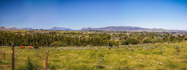 Drive through the scenic suburbs of Wellington in the Winelands (Boland) and discover the colourful world of this popular town.