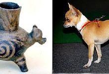 Antiguo bote en Columbus, Georgia museo probablemente representa raza Chihuahua