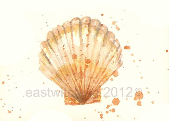 1000+ images about Seashell & Seahorse Watercolors on ...