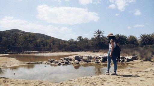 Wandering at Vai , Palm beach