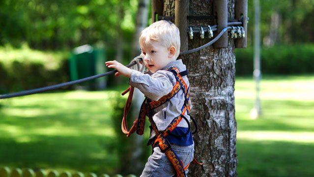 zipline backyard ziplining outside gear guy