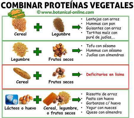 tabla combinacion de las proteinas vegetales segun sus aminoacidos esenciales y limitantes