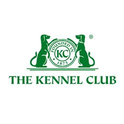 Kennel Club Statement About Jagger's Death • The Kennel Club