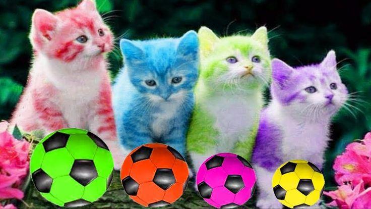 Aprende los Colores con un Juego de Gatos y Balones Futbol de Colores - ...