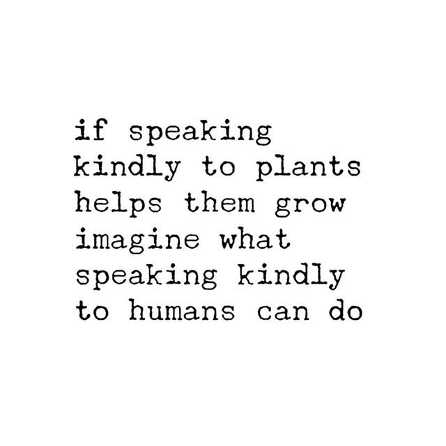 If speaking kindly to please helps plant grow Imagine what speaking kindly to human can do