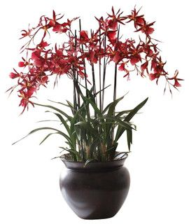 Spider Orchid In Pot Flower Arrangement - traditional - artificial flowers - by Winward Designs
