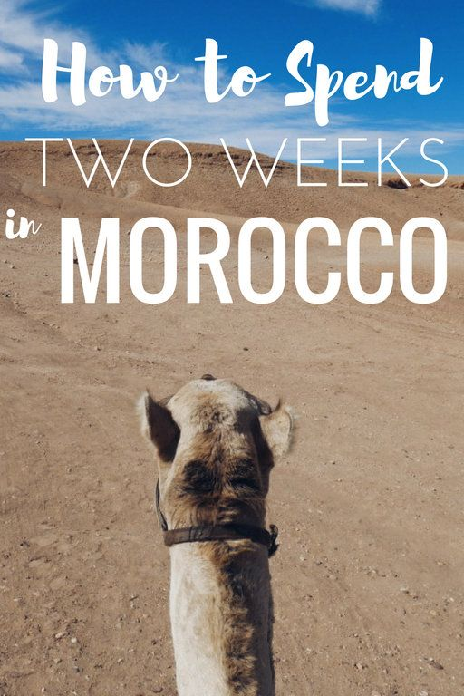 """Morocco was a trip that was decided on a little last-minute. I had to squeeze it and that meant we had just under two weeks in Morocco. With this 2 week Morocco itinerary you'll see what I thought would be the best of Morocco. Of course, you can't """"do"""" a country in two weeks but with this Morocco itinerary, you'll definitely see a lot from mountains to desert, cities, beaches, and tiny blue villages."""