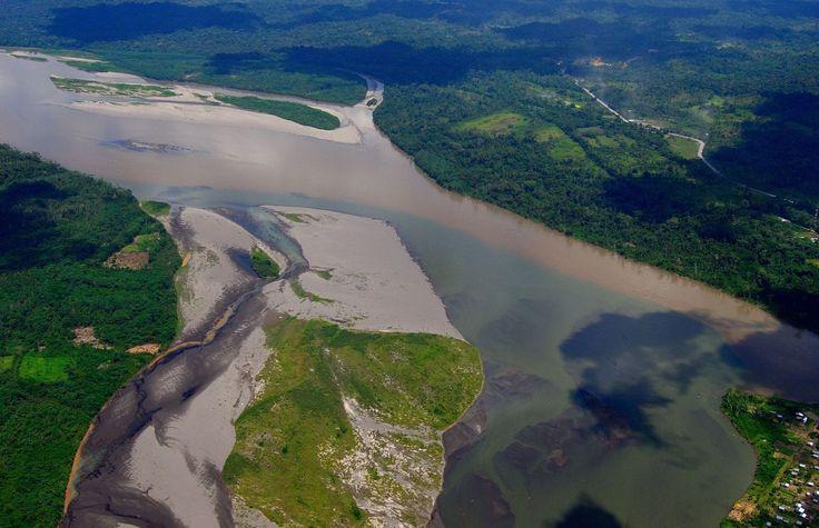 La surprenante découverte du récif corallien géant de l'Amazone