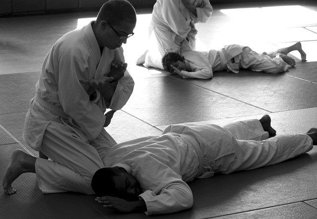 Know what is Aikido?