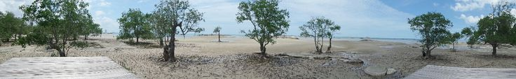 low tide on tapak hantu beach, bangka island, bangka-belitung province, indonesia