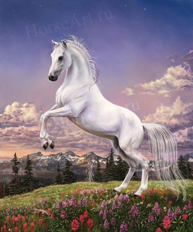 lovak - Google keresés