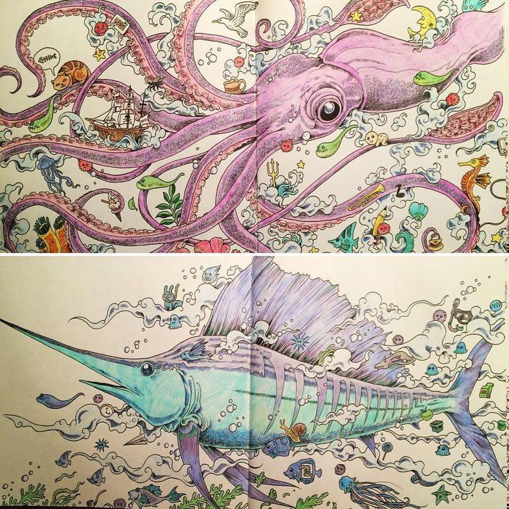 Coloring Animorphia Coloringbook Octopus