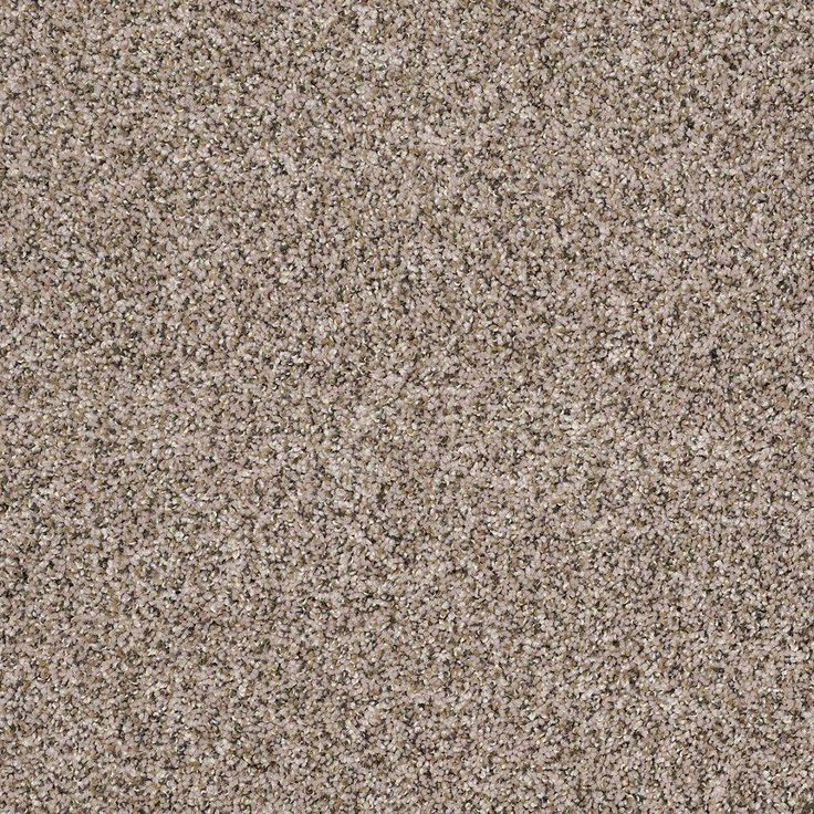 PURCHASED: Bedroom carpets: Special Buy Worthy I - Color ...