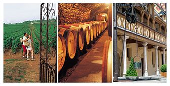Beaune, the Burgundy Wine Capital of France