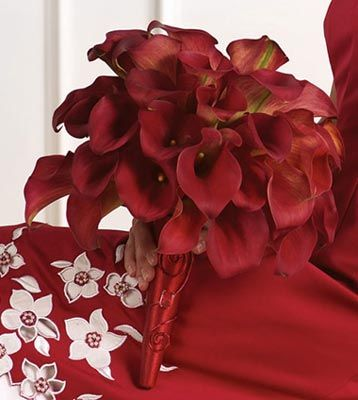 red calla lilly bouquet for bridesmaids except ribbon will be turquoise