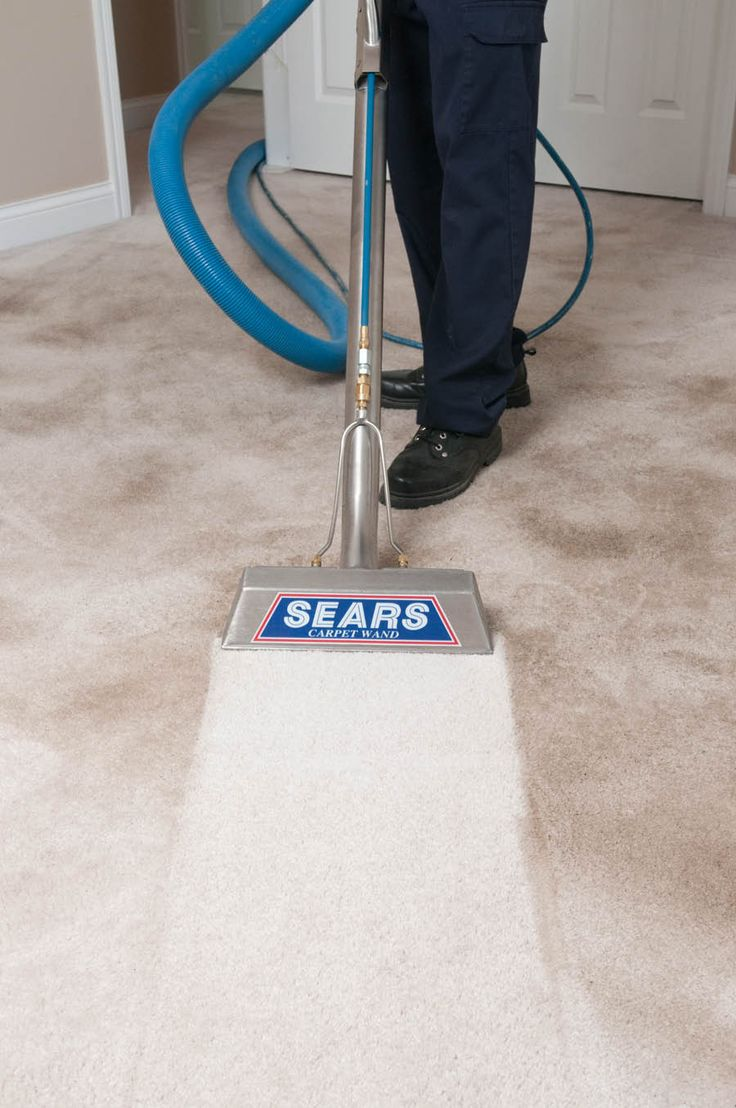 Sears carpet cleaning carpet air duct upholstery tile grout sears carpet cleaning carpet air duct upholstery tile grout cleaning by sears home improvement pinterest carpet manufacturers tile grout ppazfo