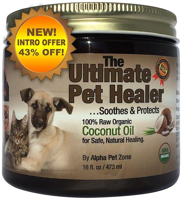 cat natural diet