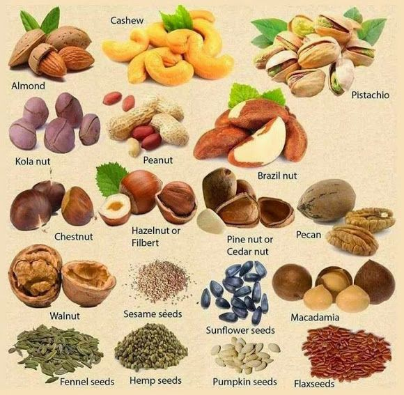 Nuts and seeds in English
