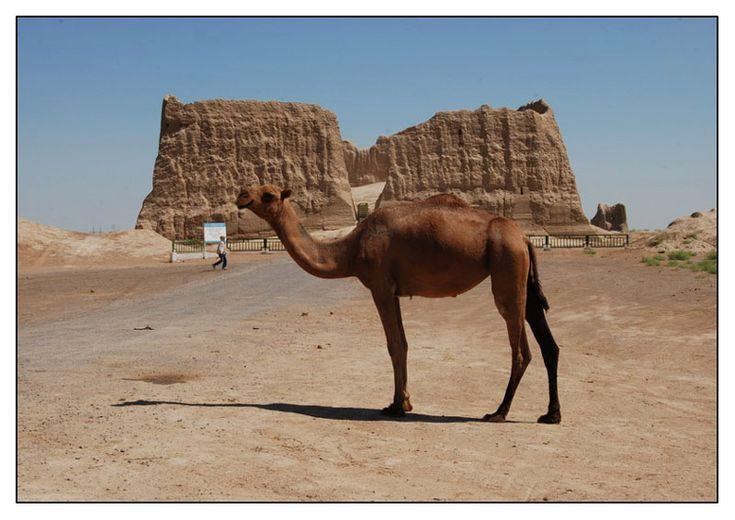 The Great Kyz Kala in Merv - Merv, Mary - Turkmenistan,
