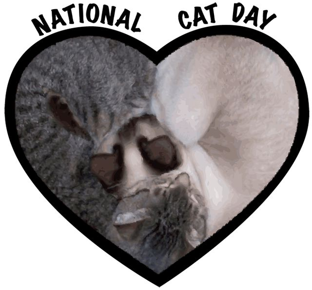 National Cat Day: Support National Cat Day