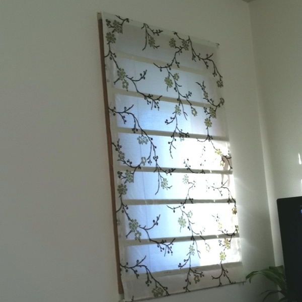 No sew roman shades ...down    Hey everyone, Finally a solution that works! I saw this new weight loss product on TV and I have lost 26 pounds so far. Here is the site http://weightpage222.com