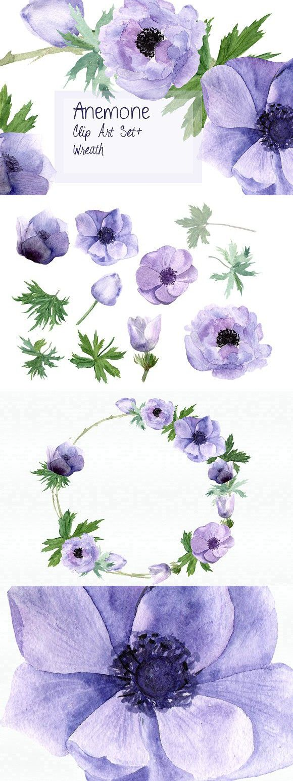 Anemone Watercolor Clip Art + Wreath. Objects. $4.00