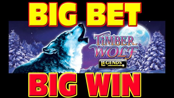 A Big Bet And A Mega Win On The Slot Machine Timber Wolf