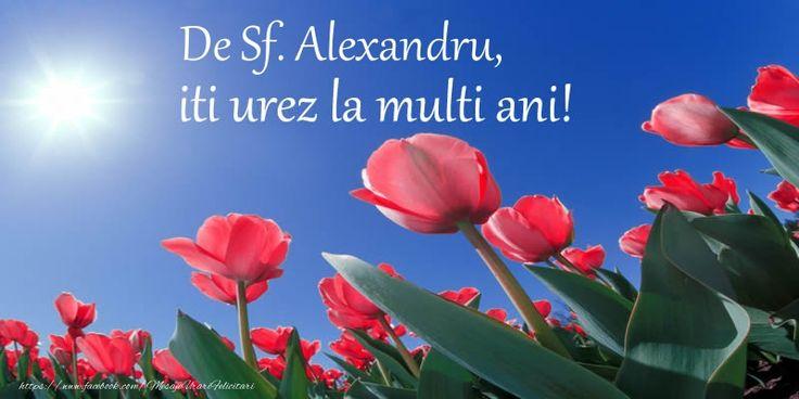 De Sf. Alexandru, iti urez La multi ani!