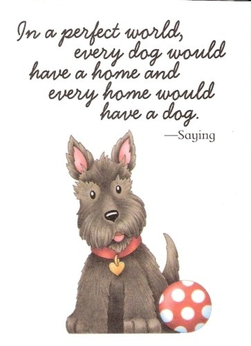 .: Dogs Quotes, Doggies, Mary Engelbreit Quotes, Puppy, Dogs Lovers, Maryengelbreit, Perfect, Cat Lovers Quotes, Animal