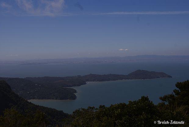Waitakere Ranges, sur la côte Ouest de l'île du Nord de la Nouvelle-Zélande #NZ #Rando http://www.breizh-zelande.fr/randonnee-waitakere-ranges/