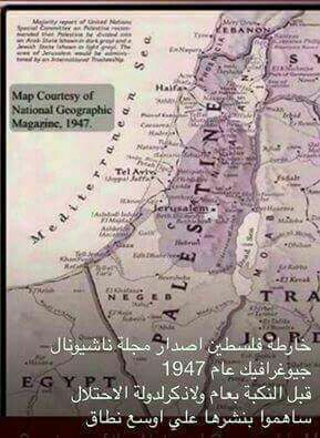 National geografic mapof Palestine published in1947.Thete no mention of something called Israel.