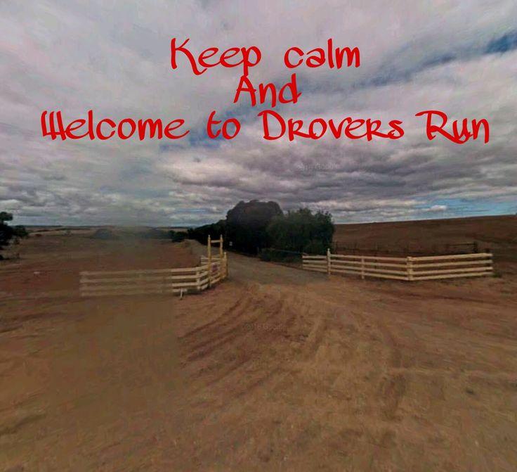 Drovers Run ❤️☀️