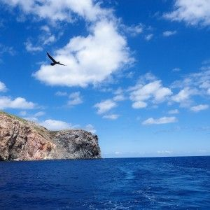 First sight of Revillagigedos Islands during WEPA expedition
