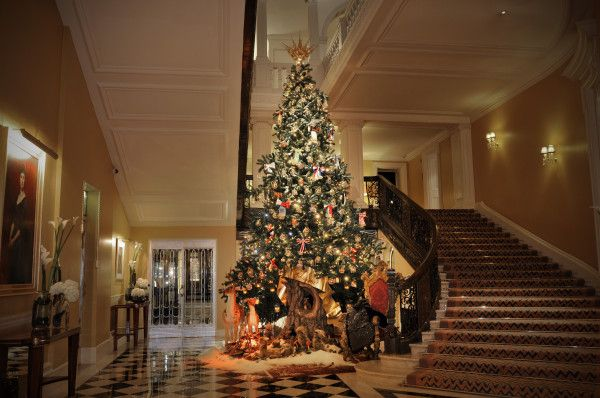 For the second time in a row Dolce & Gabbana have spread their magic in Claridge'slobby by designing this year's Claridge's Christmas tree.