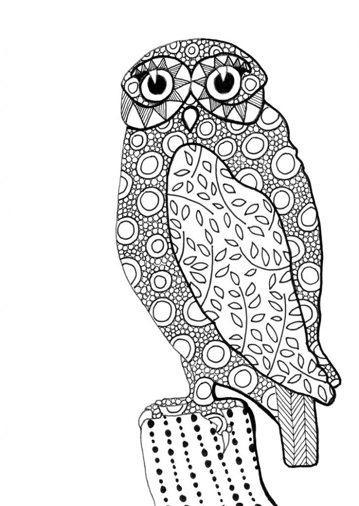 82 Best Z Owl Mandalas Images On Pinterest Coloring