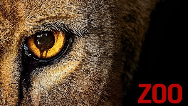 Zoo - Episode 2.01 - 2.02 - Press Release   THE TEAM ATTEMPTS TO RESCUE JAMIE AND THE LEOPARD WHOSE DNA MAY HOLD THE KEY TO CURING THE ANIMAL MUTATION ON THE SPECIAL TWO-HOUR SECOND SEASON PREMIERE OF ZOO TUESDAY JUNE 28  The Day of the Beast and Caraquet  Following the dramatic shift in violent animal behavior the team attempts to rescue Jamie and the leopard whose DNA may hold the key to curing the animal crisis. Also the team discovers a shocking mutation that threatens the life of one of…