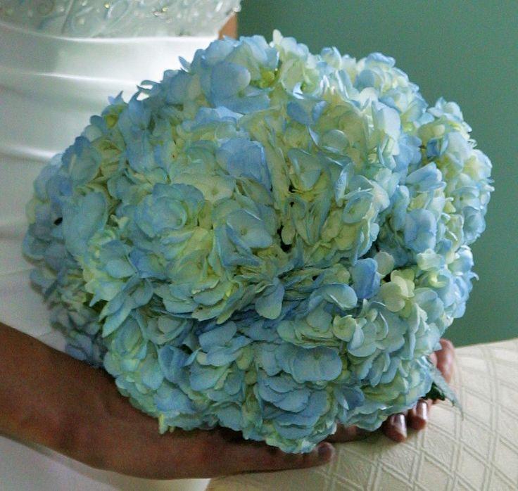 Elegant Blue Hydrangeas at Send Flowers |Light Blue Hydrangea Bouquet