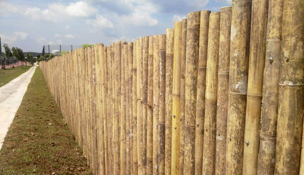 bamboo fencing and fence panels