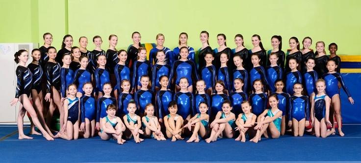 My gymnastics team 2013! go kinetic kids