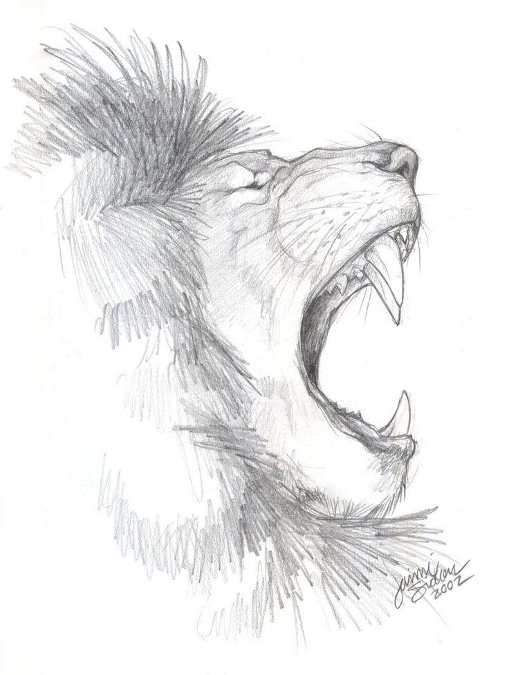 African Lion Sketch by Emryswolf.deviantart.com