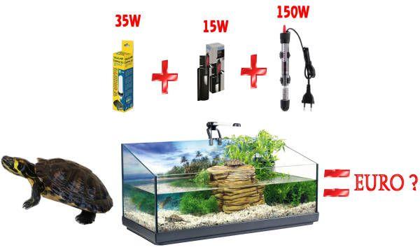 Quanta corrente consuma l'acquaterrario? Guida alla valutazione dei costi di gestione della tartaruga d'acqua dolce prima dell'acquisto.