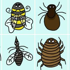 Do You Know To Identify THESE 8 Common Bug Bites? So Glad I Know...