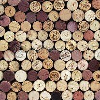 LUOGHI DEL #VINO. Dalle #enoteche dove acquistare i migliori vini del territorio, consigliati da esperti conoscitori, alle #grapperie, agli #acetifici. #Langhe #Roero #Monferrato #Barolo #Barbaresco #Asti #Piemonte