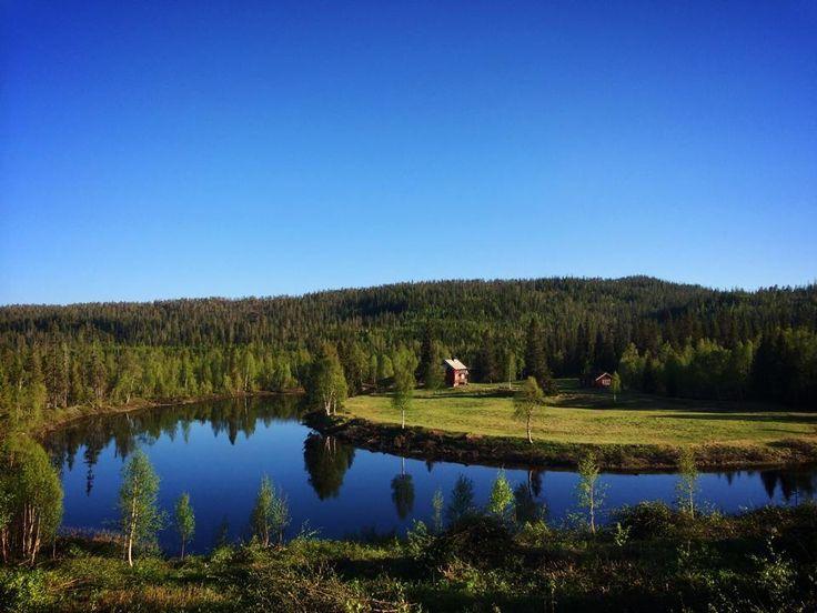 Cabin in Snåsa, Norway. www.inatur.no/hytte/53dbf5e1e4b0bc0f4c3b3b12/almoseteren-i-snasa | Inatur.no